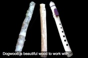 stages of a branch dogwood native american style flute