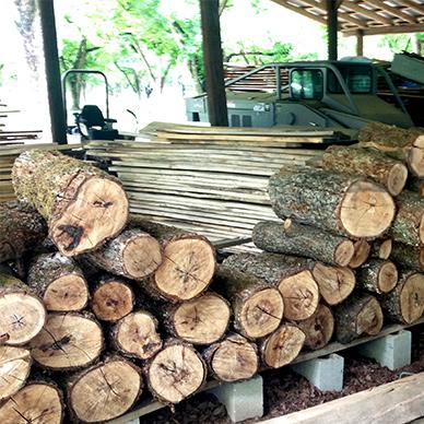 pecan logs from Ellis Brothers Pecans