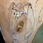 wood slice showing unique grain