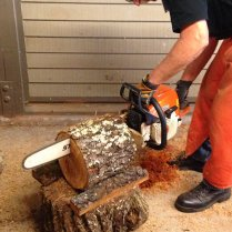 bob-sawing-log-w