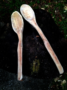 Two sweetgum spoons to be left to dry for a few days