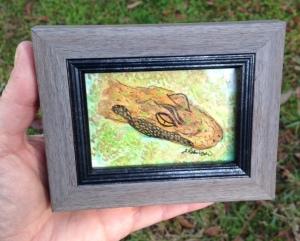 Baby Gator in Mini Frame
